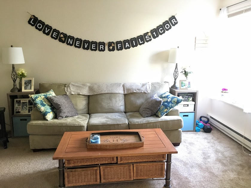 furnish apartment on a budget